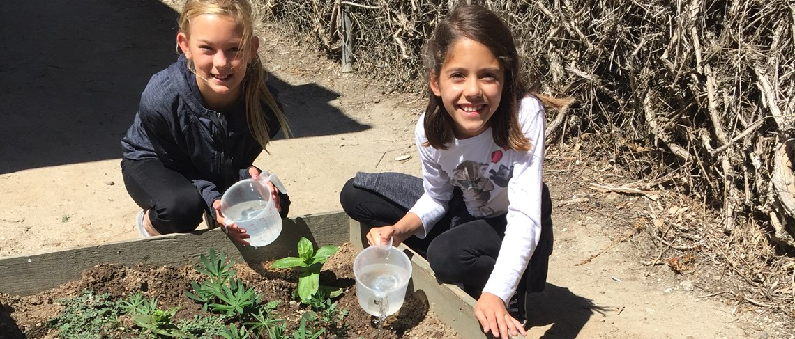 The student garden is a great way to teach ecological literacy and respect for the Earth